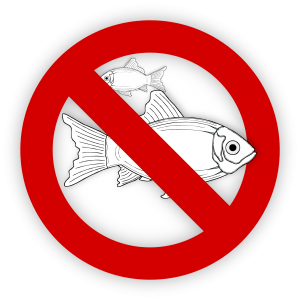 allergic to fish